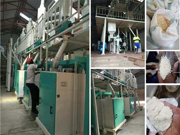 planta procesadora de harina de maiz