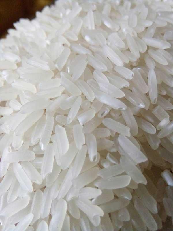 molino de arroz